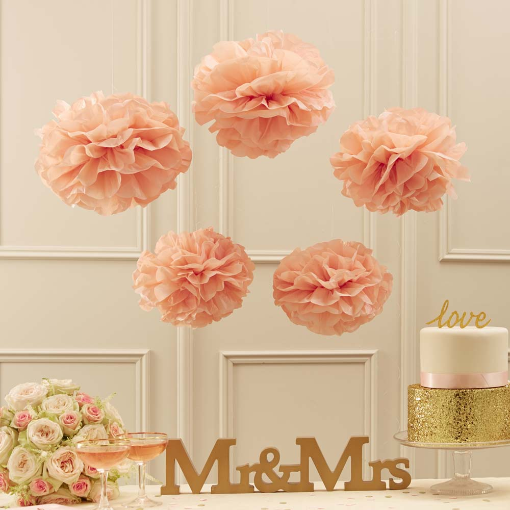 Pastel Pink Pom Pom Set