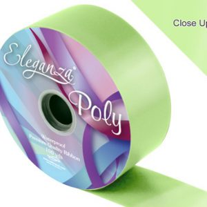 Mint Wedding Car Ribbon